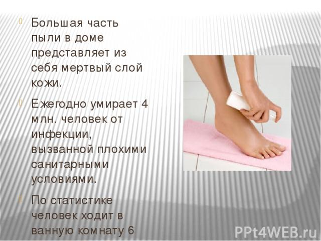 Большая часть пыли в доме представляет из себя мертвый слой кожи. Ежегодно умирает 4 млн. человек от инфекции, вызванной плохими санитарными условиями. По статистике человек ходит в ванную комнату 6 раз в день.