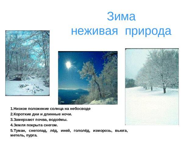 Зима неживая природа 1.Низкое положение солнца на небосводе 2.Короткие дни и длинные ночи. 3.Замерзают почва, водоёмы. 4.Земля покрыта снегом. 5.Туман, снегопад, лёд, иней, гололёд, изморозь, вьюга, метель, пурга.