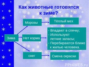 Как животные готовятся к зиме? Тёплый мех - Впадают в спячку; - Используют летни