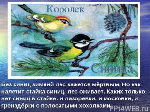 Без синиц зимний лес кажется мёртвым. Но как налетит стайка синиц, лес оживает.