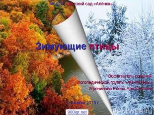 Зимующие птицы Воспитатель средней логопедической группы «Фантазёры» Угренинова