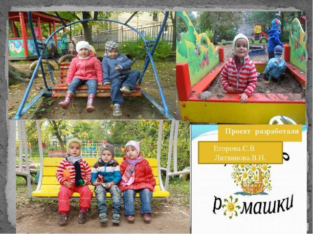 Проект разработали Егорова.С.В Литвинова.В.Н.