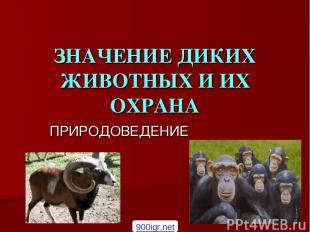 ЗНАЧЕНИЕ ДИКИХ ЖИВОТНЫХ И ИХ ОХРАНА ПРИРОДОВЕДЕНИЕ 900igr.net