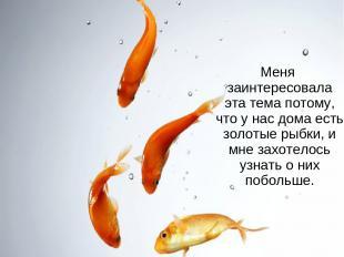 Меня заинтересовала эта тема потому, что у нас дома есть золотые рыбки, и мне за