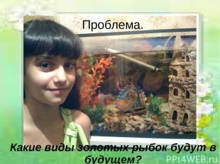 Проблема. Какие виды золотых рыбок будут в будущем?