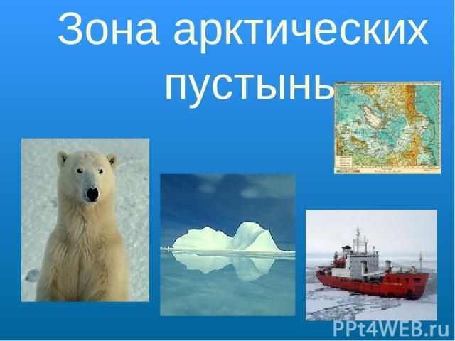Зона арктических пустынь