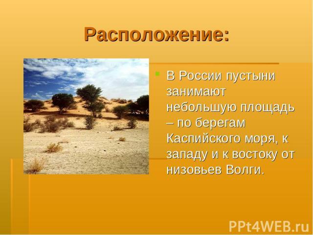 Расположение: В России пустыни занимают небольшую площадь – по берегам Каспийского моря, к западу и к востоку от низовьев Волги.