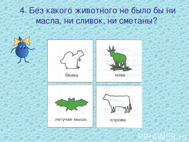4. Без какого животного не было бы ни масла, ни сливок, ни сметаны?