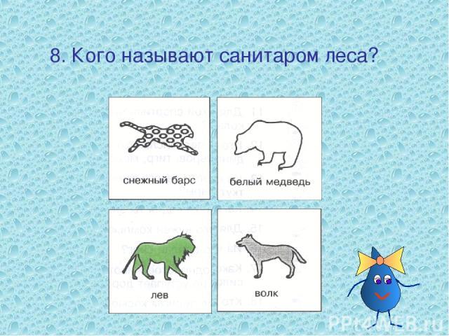 8. Кого называют санитаром леса?