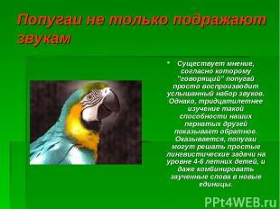 """Попугаи не только подражают звукам Существует мнение, согласно которому """"говорящ"""
