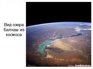 Вид озера Балхаш из космоса