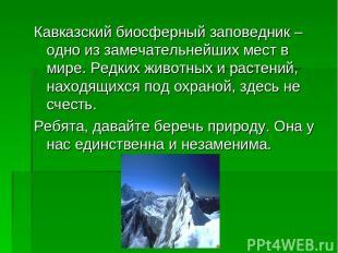 Кавказский биосферный заповедник – одно из замечательнейших мест в мире. Редких