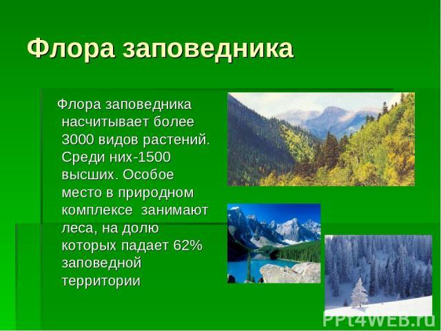 Флора заповедника Флора заповедника насчитывает более 3000 видов растений. Среди них-1500 высших. Особое место в природном комплексе занимают леса, на долю которых падает 62% заповедной территории