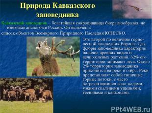 Природа Кавказского заповедника Это второй по величине горно-лесной заповедник Е