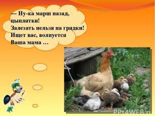 —Ну-ка марш назад, цыплятки! Залезать нельзя нагрядки! Ищет вас, волнуется Ваш