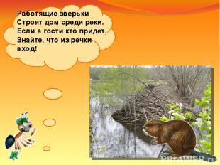 Работящие зверьки Строят дом среди реки. Если вгости кто придет, Знайте, что из