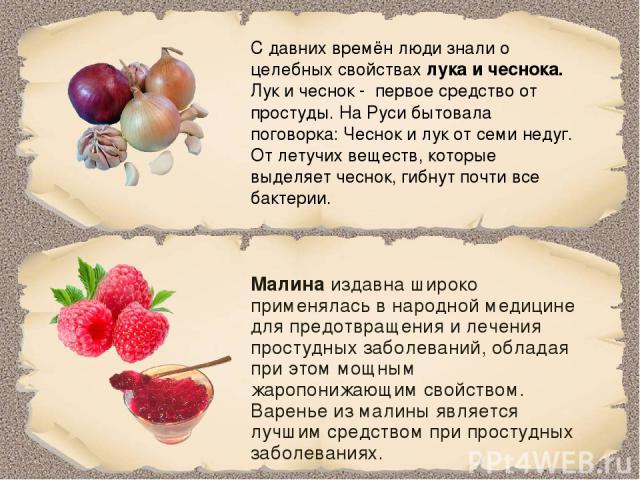 С давних времён люди знали о целебных свойствах лука и чеснока. Лук и чеснок - первое средство от простуды. На Руси бытовала поговорка: Чеснок и лук от семи недуг. От летучих веществ, которые выделяет чеснок, гибнут почти все бактерии. Малина издавн…