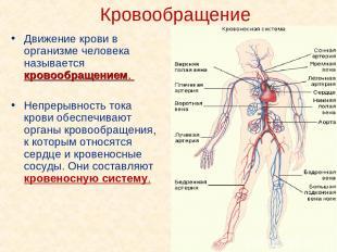 Кровообращение Движение крови в организме человека называется кровообращением. Н