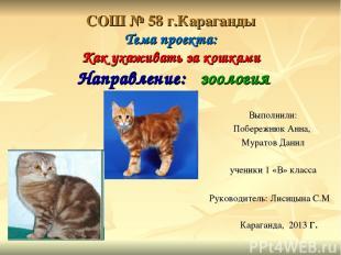 СОШ № 58 г.Караганды Тема проекта: Как ухаживать за кошками Направление: зоологи