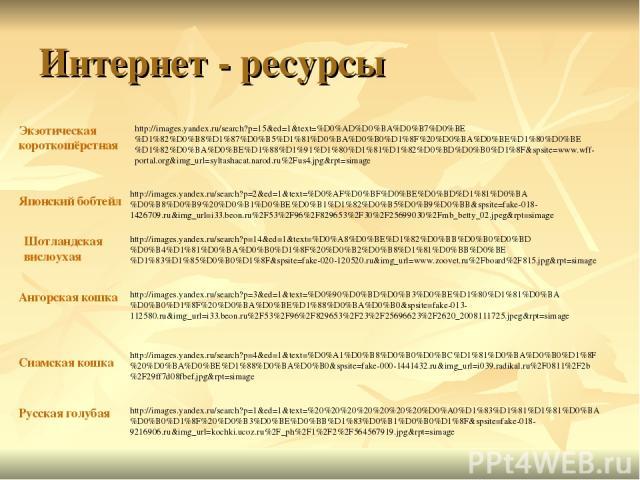 Интернет - ресурсы http://images.yandex.ru/search?p=4&ed=1&text=%D0%A1%D0%B8%D0%B0%D0%BC%D1%81%D0%BA%D0%B0%D1%8F%20%D0%BA%D0%BE%D1%88%D0%BA%D0%B0&spsite=fake-000-1441432.ru&img_url=i039.radikal.ru%2F0811%2F2b%2F29ff7d08fbef.jpg&rpt=simage http://ima…