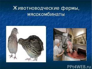 Животноводческие фермы, мясокомбинаты