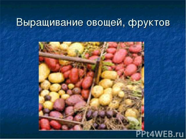 Выращивание овощей, фруктов