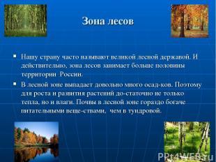 Зона лесов Нашу страну часто называют великой лесной державой. И действительно,