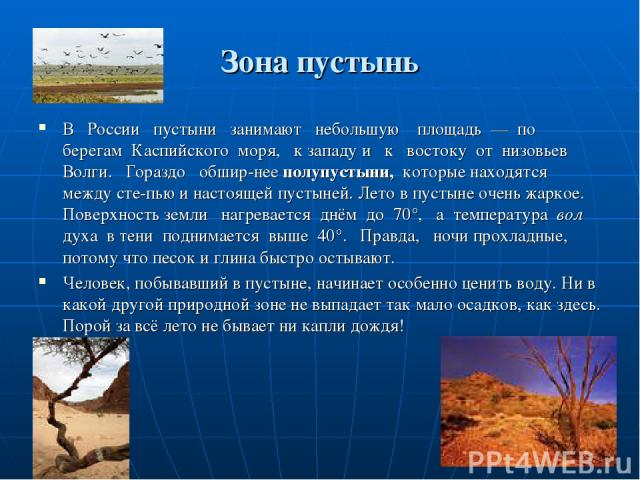 Зона пустынь В России пустыни занимают небольшую площадь — по берегам Каспийского моря, к западу и к востоку от низовьев Волги. Гораздо обшир нее полупустыни, которые находятся между сте пью и настоящей пустыней. Лето в пустыне очень жаркое. Поверхн…