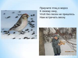 Приучите птиц в мороз К своему окну, Чтоб без песен не пришлось Нам встречать ве