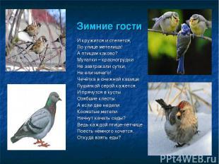 Зимние гости И кружится и стелется, По улице метелица! А птицам каково? Мулатки
