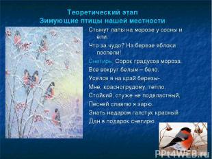 Теоретический этап Зимующие птицы нашей местности Стынут лапы на морозе у сосны