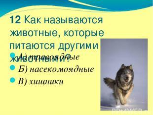 12 Как называются животные, которые питаются другими животными? А) травоядные Б)