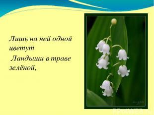 Лишь на ней одной цветут Ландыши в траве зелёной,