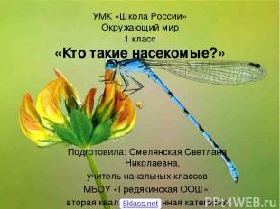 УМК «Школа России» Окружающий мир 1 класс «Кто такие насекомые?» Подготовила: См