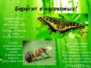 Берегите насекомых! Муравей нашел былинку, Много было с ней хлопот. Как бревно,