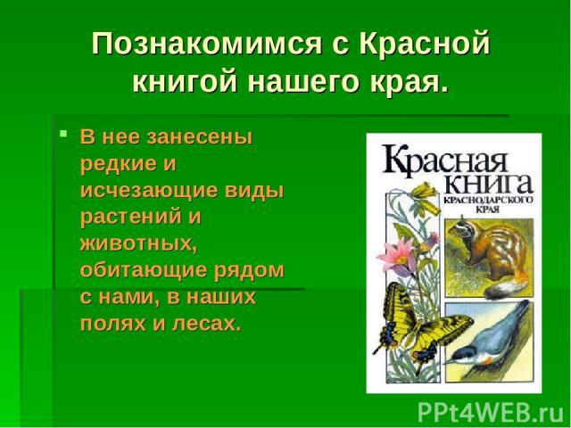 Познакомимся с Красной книгой нашего края. В нее занесены редкие и исчезающие виды растений и животных, обитающие рядом с нами, в наших полях и лесах.