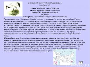 ПОЗВОНОЧНЫЕ - VERTEBRATA Отряд: Журавлеобразные - Gruiformes Семейство: Журавлин