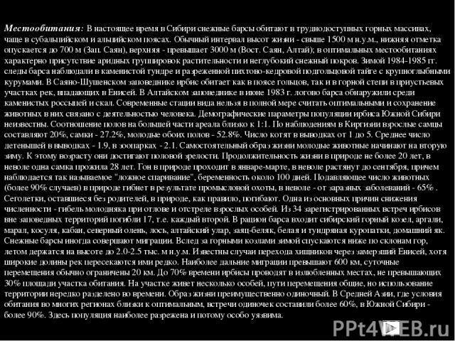 Местообитания: В настоящее время в Сибири снежные барсы обитают в труднодоступных горных массивах, чаще в субальпийском и альпийском поясах. Обычный интервал высот жизни - свыше 1500 м н.у.м., нижняя отметка опускается до 700 м (Зап. Саян), верхняя …