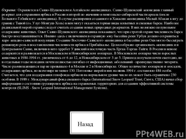 Охрана: Охраняется в Саяно-Шушенском и Алтайском заповедниках. Саяно-Шушенский заповедник главный резерват для сохранения ирбиса в России и второй по значению в монгольско-сибирской части ареала (после Большого Гобийского заповедника). В случае расш…