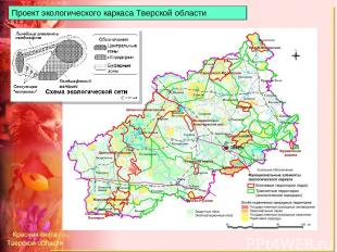 Проект экологического каркаса Тверской области
