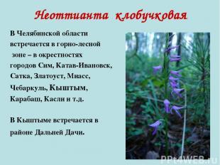 Неоттианта клобучковая В Челябинской области встречается в горно-лесной зоне – в