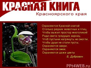 Охраняются Красной книгой Столько редких животных и птиц, Чтобы выжил простор мн