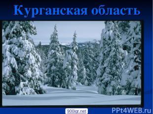 Курганская область 900igr.net