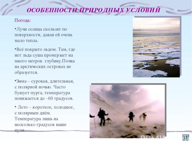 ОСОБЕННОСТИ ПРИРОДНЫХ УСЛОВИЙ Погода: Лучи солнца скользят по поверхности, давая ей очень мало тепла. Всё покрыто льдом. Там, где нет льда суша промерзает на много метров глубину.Почва на арктических островах не образуется. Зима – суровая, длительна…