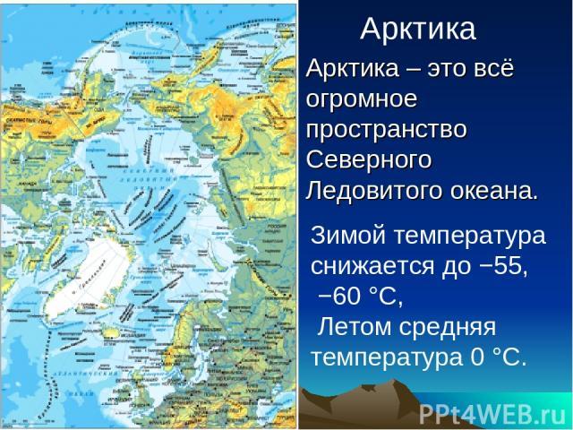 Арктика Арктика – это всё огромное пространство Северного Ледовитого океана. Зимой температура снижается до −55, −60 °C, Летом средняя температура 0 °C.