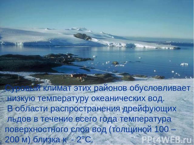 Суровый климат этих районов обусловливает низкую температуру океанических вод. В области распространения дрейфующих льдов в течение всего года температура поверхностного слоя вод (толщиной 100 – 200 м) близка к - 2°С.