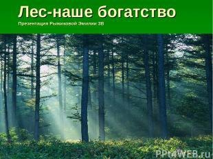Лес-наше богатство Презентация Рыжиковой Эмилии 3В