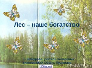 Лес – наше богатство Т. Шебурова, учитель начальных классов МОУ СОШ с. Пушанина