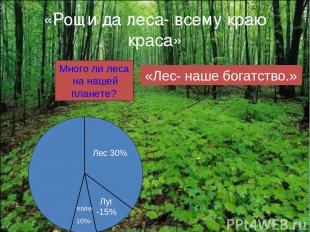 «Рощи да леса- всему краю краса» Много ли леса на нашей планете? Лес 30% Луг -15