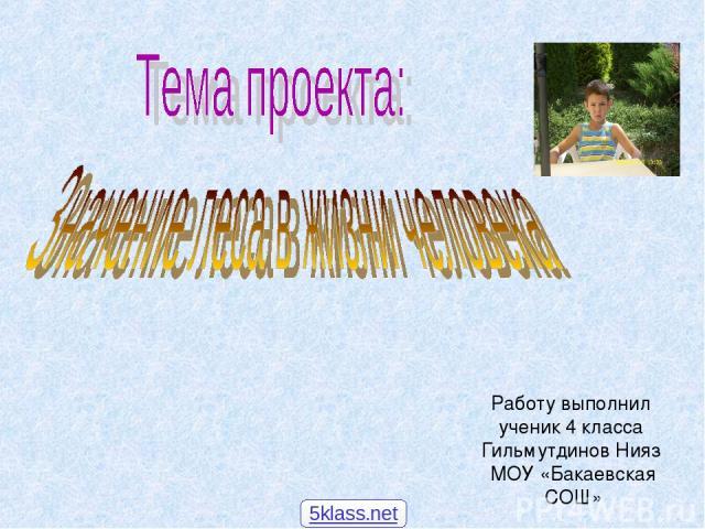 Работу выполнил ученик 4 класса Гильмутдинов Нияз МОУ «Бакаевская СОШ» 5klass.net
